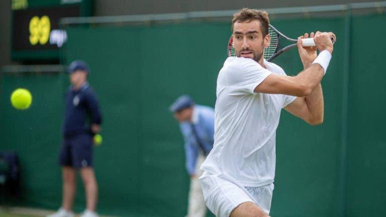 Cilic aponta perigo: «Medvedev vai ser muito difícil de derrotar em Wimbledon»