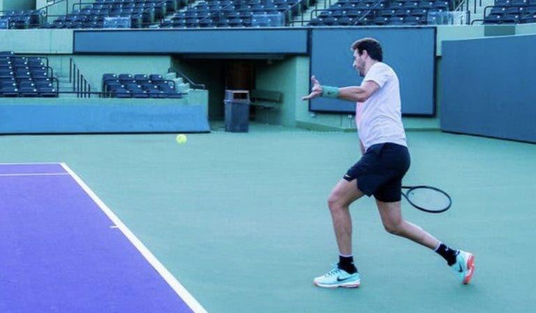 Del Potro está de regresso ao US Open para treinar com… John McEnroe